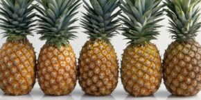 Pineapple Dream Meaning