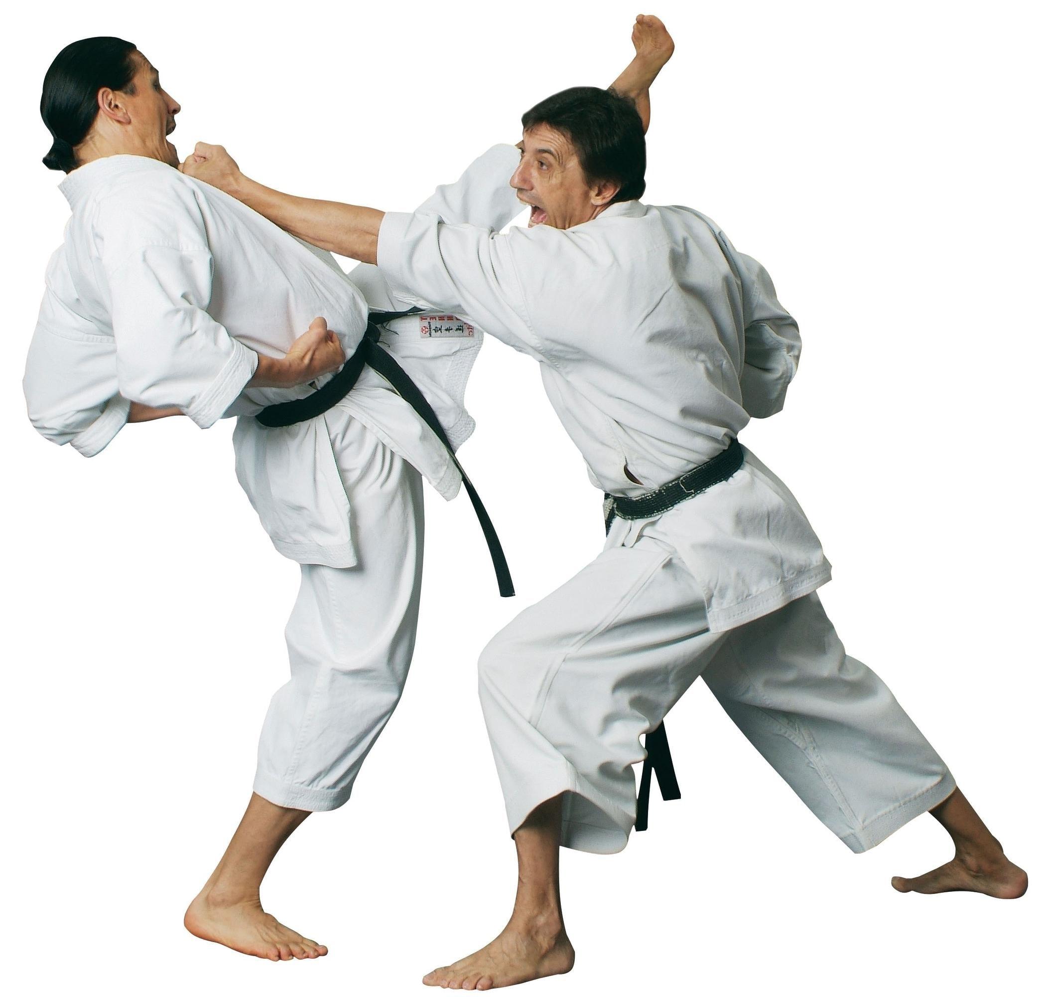 karate dream meaning, dream about karate, karate dream interpretation, seeing in a dream karate